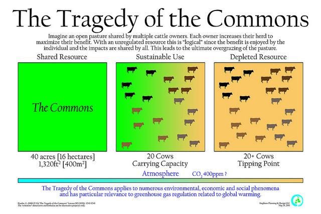 tragedy of the commons and collective action Abstract 'the tragedy of the commons' arises when it is difficult and costly to exclude potential users from common-pool resources that yield finite flows of benefits, as a result of which those resources will be exhausted by rational, utility-maximizing individuals rather than conserved for the benefit of all.