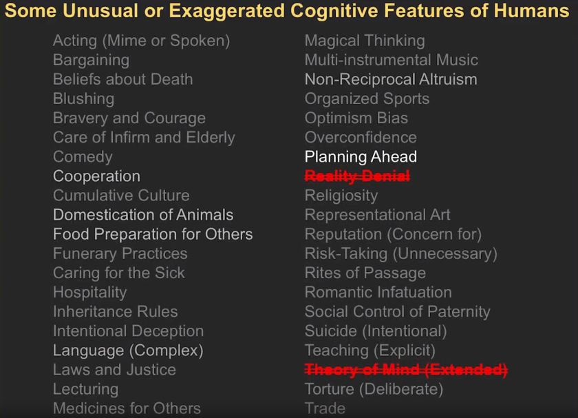 Unique Human Cognittive Features