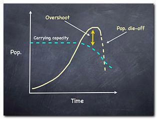 Carrying Capacity & Overshoot