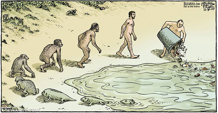 Bizarro.com on Evolution